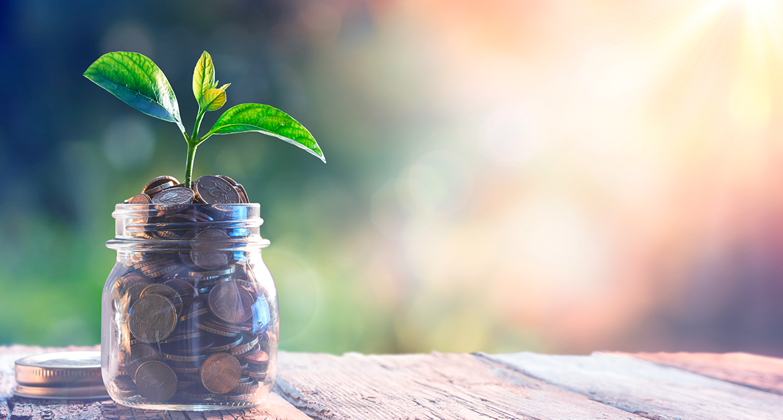 5 dicas de investimento para iniciantes